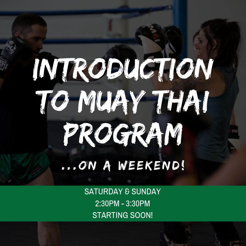 Introduction to muay thai (3).png