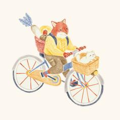 2-bicyclejpg