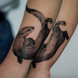 #loutre #loutres #animals #worldfamousin