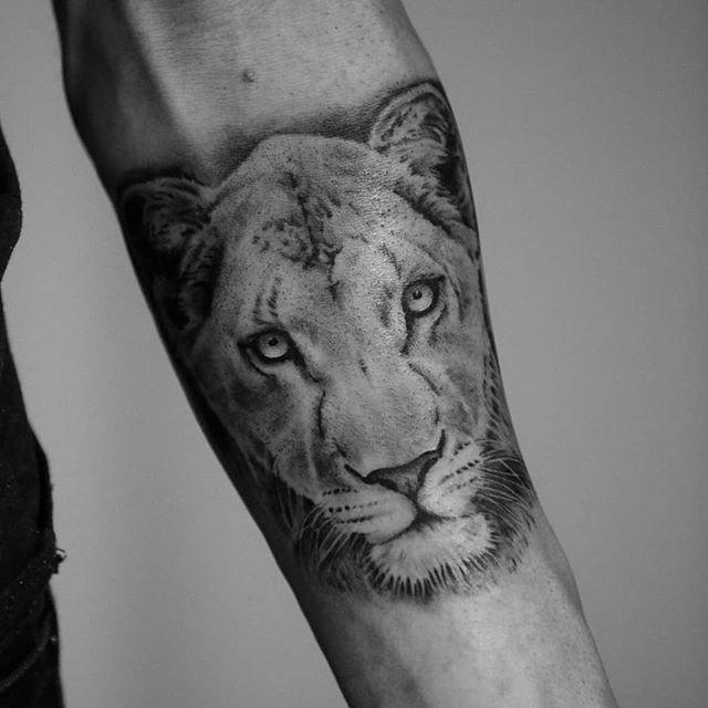 #lionne #animals #rennesmaville  #monoch