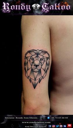 lion geometrique  #tatouagerennes #tatoueur #photo #artistetatouer #photographer #tattooartist #tato