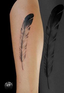 Plume Tattoo - www.rondytattoo