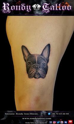Bouledogue tattoo #chien  #tatouagerennes #tatoueur #photo #artistetatouer #photographer #tattooarti