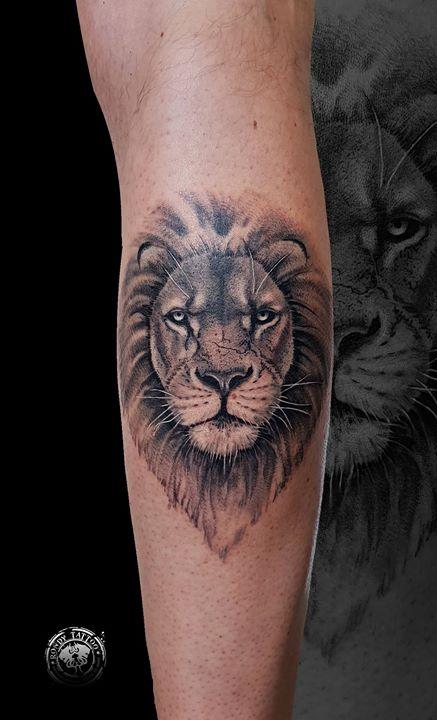 Lion realism tattoo - www.rondytattoo