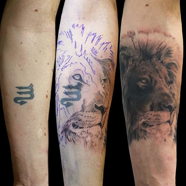 #lion #realismtattoo #cover #tattoocover