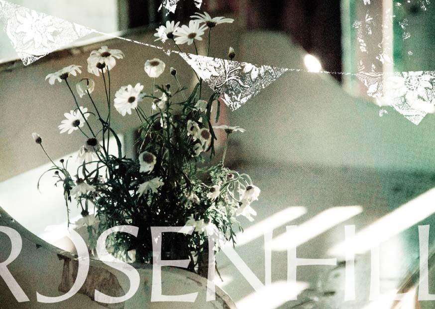 Postkarten_rosenhill_front_4.jpg