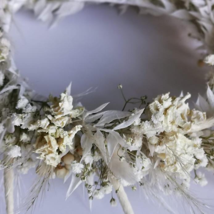 Dried Flowers 4.jpeg
