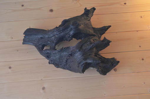 """""""The Boar's Head"""" wall lamp (stained sweet chestnut)"""