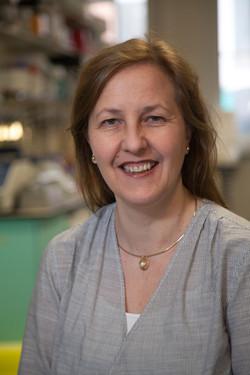 Stephanie Kermorgant