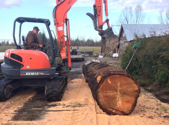 Log Prep