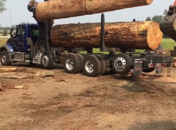 Log Delivery