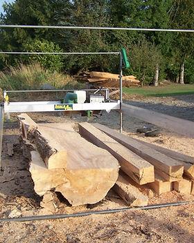 sawmill, trail cam sept 2014 095.JPG