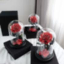 rose eternelle sous cloche / la belle rose paris