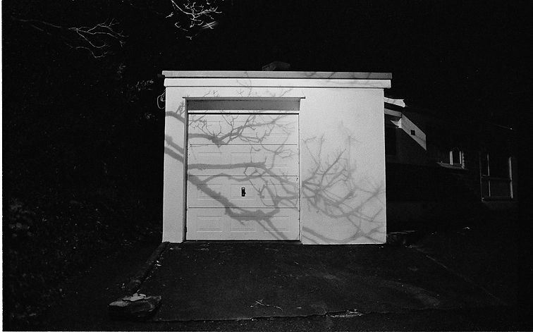 night, branches, flash, film photogaphy uk