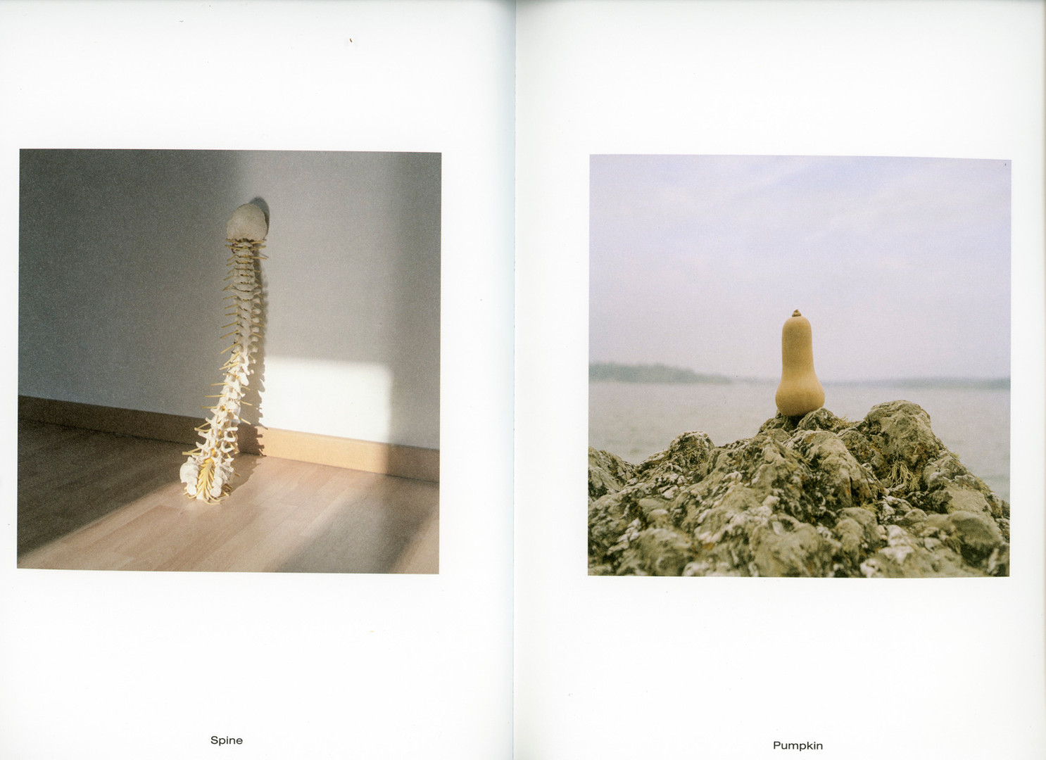 Lonely Toys_printed-4.jpg