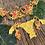 Thumbnail: Bikini Gabbiani (+ colores)