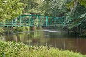 edisto walking bridge.jpg