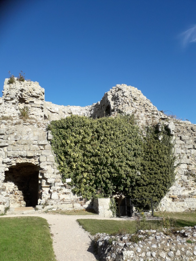 Members trip to Pevensey Castle