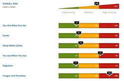 Online fitness dashboard showing exercise and nutrition