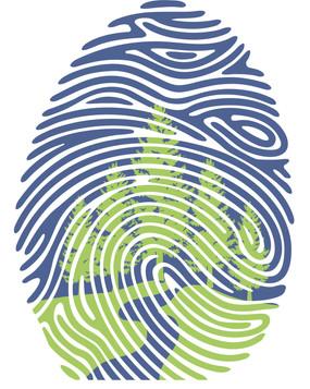Discover Ness Creek Logo Design