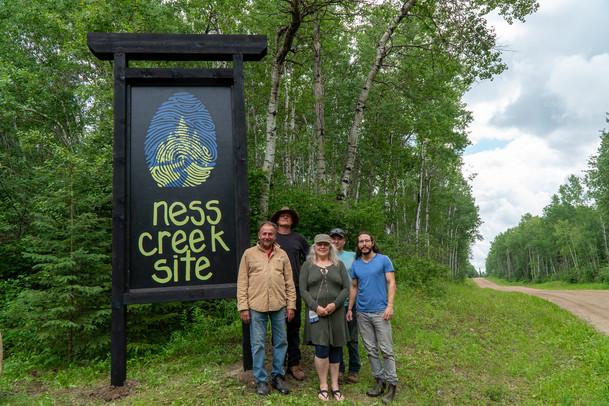 Discover Ness Creek Branding