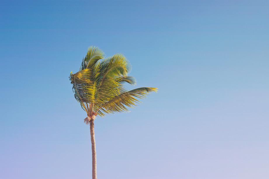 Hola, Punta Cana!