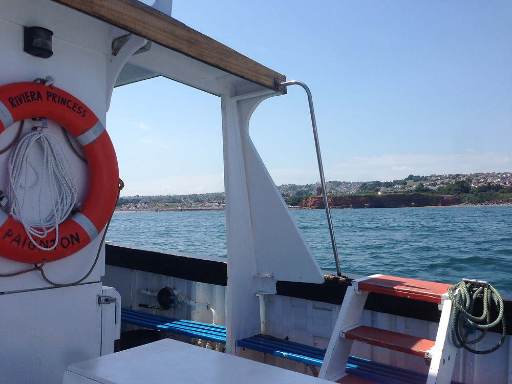 Catch a ferry in Torquay Harbour to Paignton, Brixham or Dartmouth