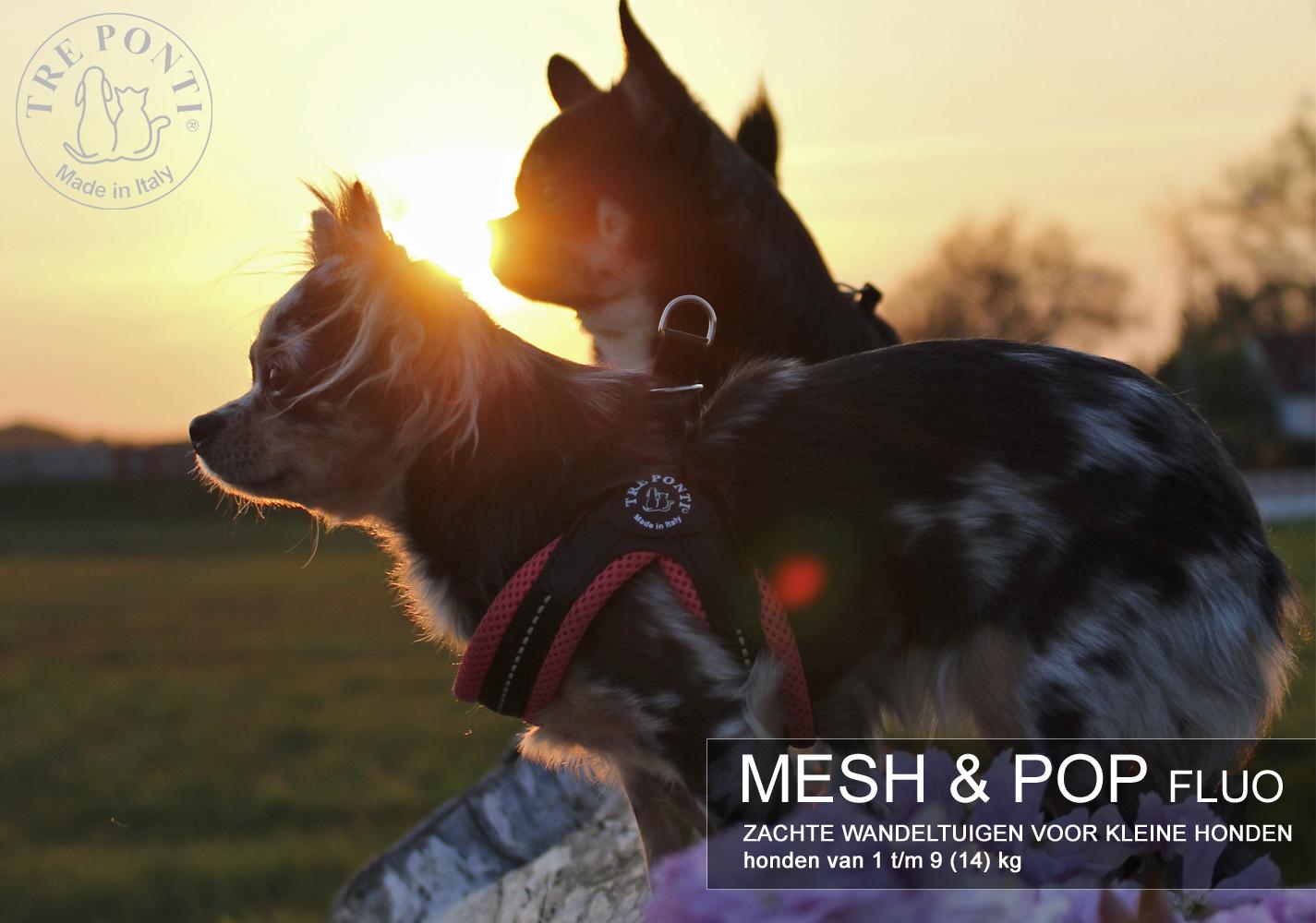carroussel mesh en pop