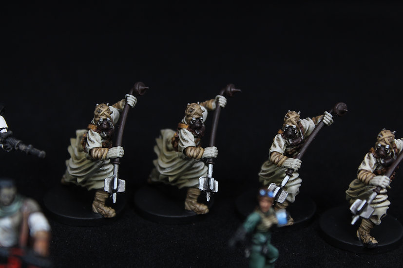 Star Wars Imperial Assault Twin Shadows Elite Painted