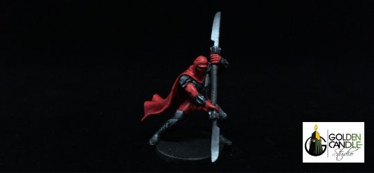 Star Wars Imperial Assault Royal Guard Champion commission painted