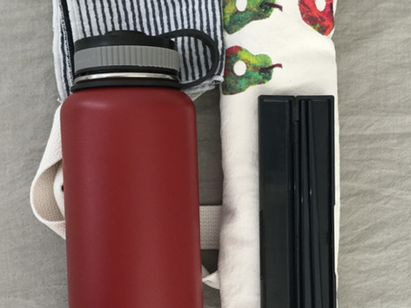 Another ordinary zero-waste blogger in Singapore