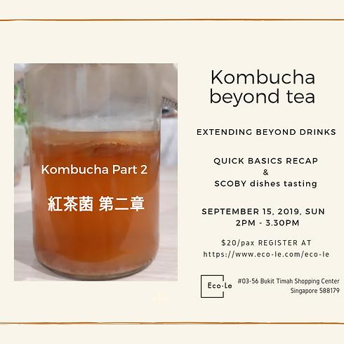 Kombucha Part 2