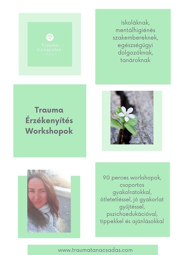 Trauma Érzékenyítés Workshopok (1).png
