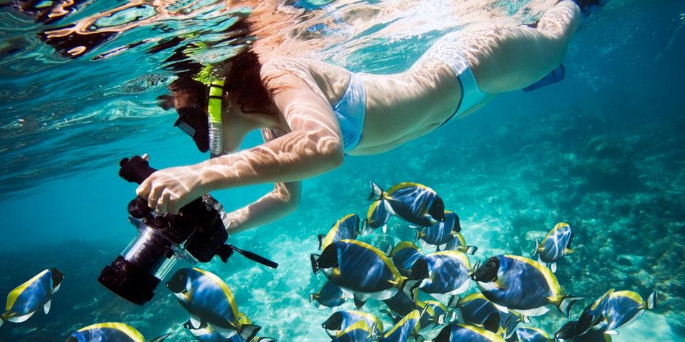 Lagoon and gourmet experience Noumea