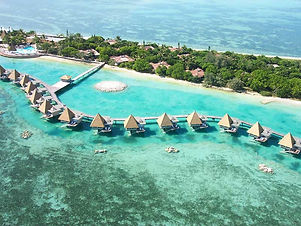 Escape to Paradise - Island Combo