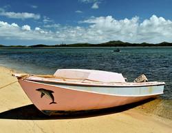 Picnics on a deserted islet