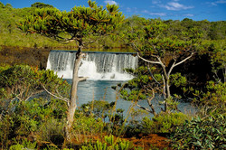 Madeleine Fall - New Caledonia