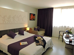 Standard room - Beaurivage Hotel