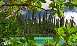 Ile des Pins / New Caledonia Tourism