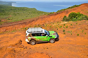 """4WD Guided Tour to the Great South: The """"Must See"""" Tour"""