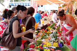 Local Flavours of Noumea