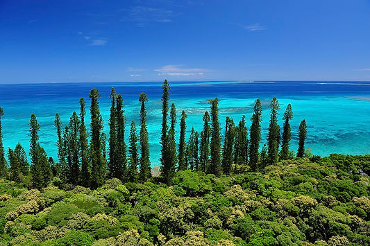 New Caledonia Holidays - Deals 2017 - New Caledonia Travel