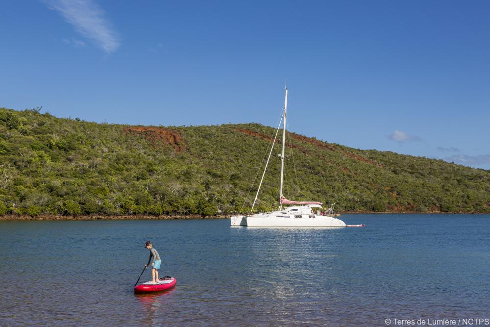 Paddle Board - Catamaran