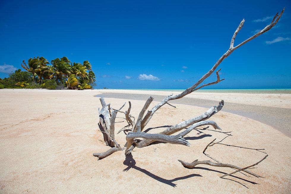 New Caledonia, Holidays, Voyages, Noumea, Travel, Australia, Isle of Pines, Lifou, Loyalty Island, Mare, Ouvea, Accomodation New Caledonia, New Caledonia Packages, New Caledonia Holidays, Travel agency
