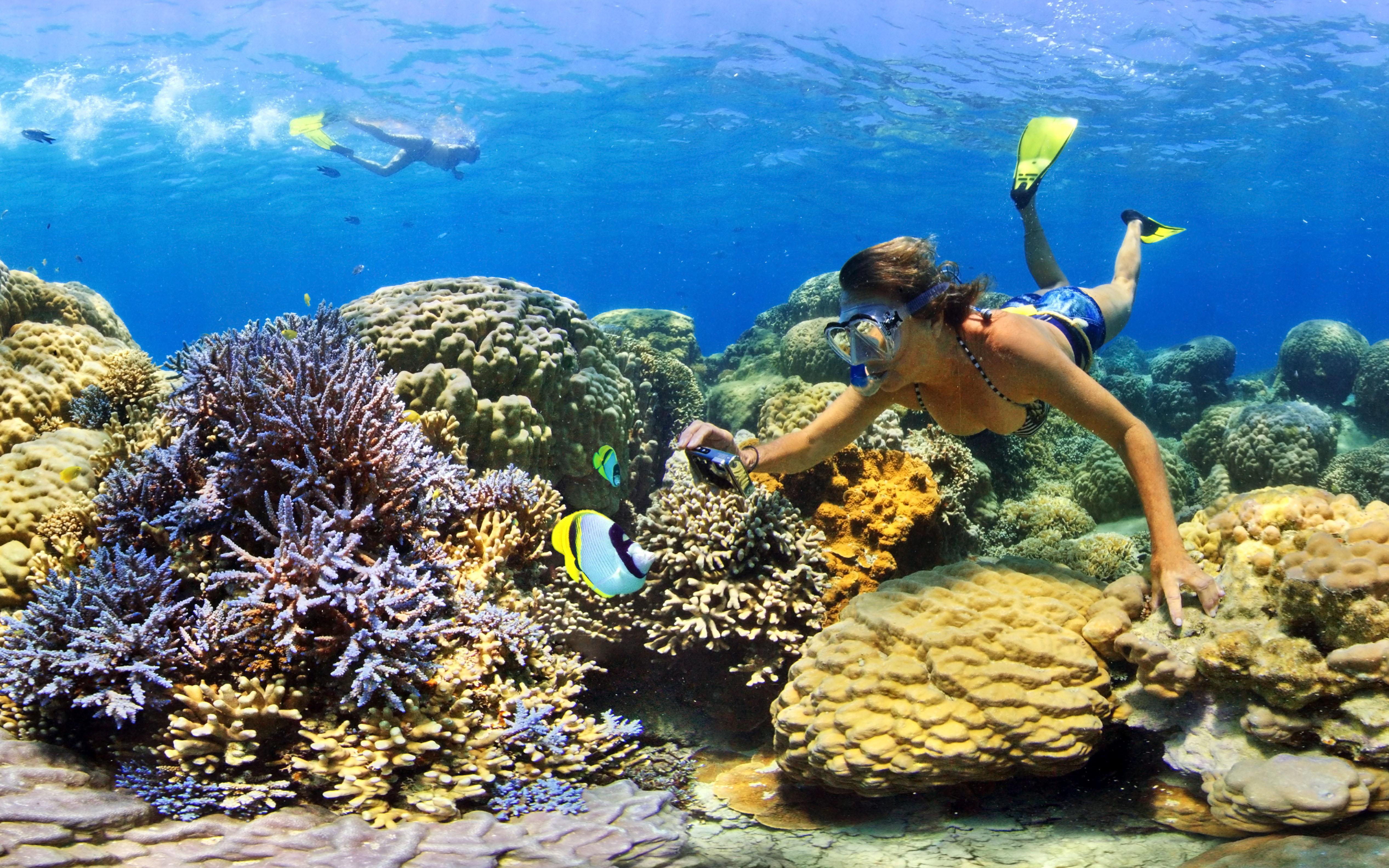 Diving in Escapade Island