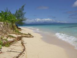 Poindimie - Beach