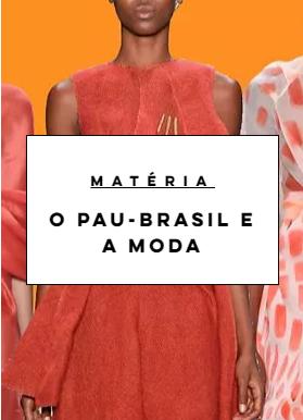 Pau Brasil: moda e exploração
