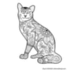 Cat Coloring Pagec.png