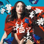 Kary Ng - Glamorous (豔羨)