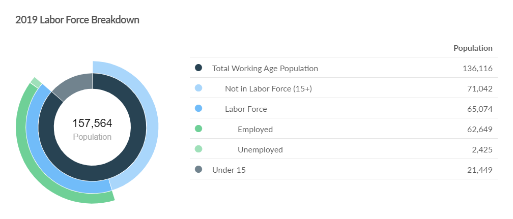 2019 Labor Force Breakdown.png
